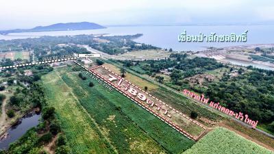 ที่ดิน 5700000 ลพบุรี พัฒนานิคม พัฒนานิคม